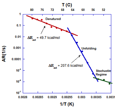 Figure 1: Arrhenius Plot of mAb